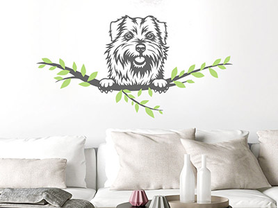 Wandtattoo Norfolk Terrier