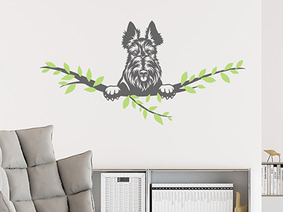 Wandtattoo Scottish Terrier