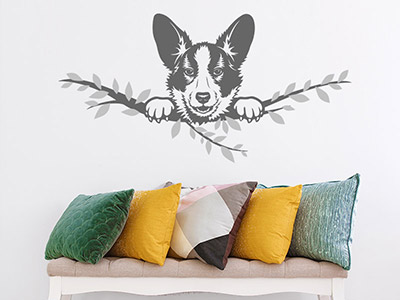 Wandtattoo Welsh Corgi Cardigan