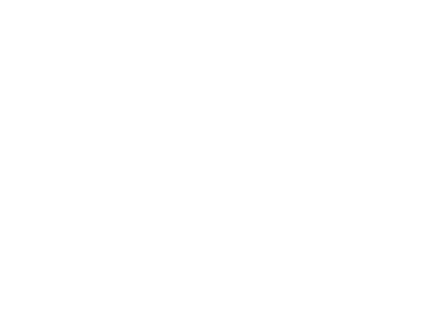 Wandtattoo Wald - Hirsche - Tannen - Landschaft - Wandtattoos.de